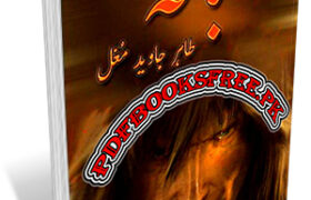 Abaqa Novel 2 Volumes Complete By Tahir Javed Mughal Pdf Free Download