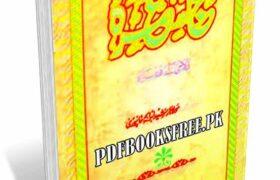 Hajj Aur Umra By Maulana Muhammad Iqbal Falahi Pdf Free Download