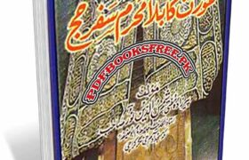 Aurat Ka Bila Mahram Safar-e-Hajj By Mufti Shams Uddin Noor Pdf Free Download