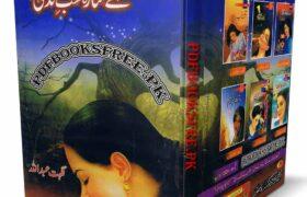 A Sitara Shab e Zindagi Novel By Nighat Abdullah Pdf Free Download