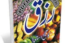 Khane Ke Islami Adab Rizaq Ka Saheeh Istemal By Mufti Taqi Usmani Pdf Free Download