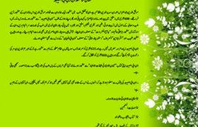 A Brief History of Ibn Abi Asibah in Urdu