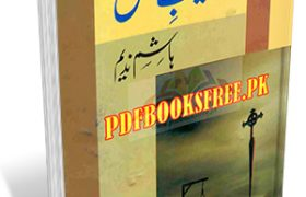 Saleeb e Ishq Book By Hashim Nadeem Pdf Free Download