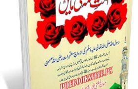 Ummat e Muslima Ki Maain By Maulana Ashiq Elahi Pdf Free Download