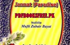 The Maidens of Jannat (Paradise)