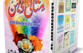 Misali Dulhan By Qari Jamil ur Rahman Pdf Free Download