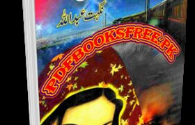 Keh Dil Buhat Udas Hai Novel By Nighat Abdullah Pdf Free Download