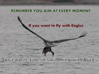 Remember Your AIM at Every Time