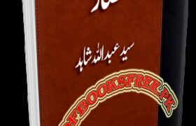 Hisar Novel by Syed Abdullah Shahid Pdf Free Download