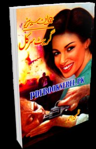 Great Circle Novel By Zaheer Ahmad