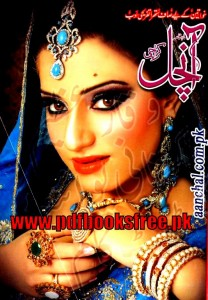 Aanchal Digest November 2013