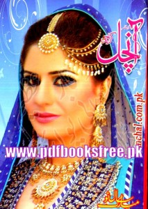 Monthly Aanchal Digest January 2014 Pdf Free Download