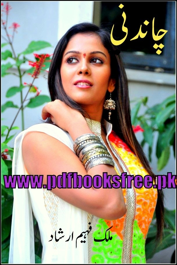Chandni Net Worth