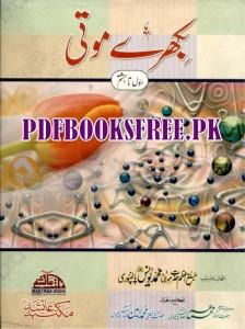 Bikhre Moti By Maulana Muhammad Yunus Palanpuri Pdf Free Download