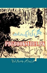 Jungle Ki Aik Raat Novel by Rehan Ahmed Abbasi Pdf Free Download