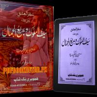 Saif ul Malook o Badi ul Jamal By Mian Muhammad Bakhsh Pdf Free Download