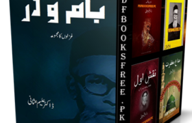 Bam o Dar Poetry Book by Dr Aleem Usmani Pdf Free Download
