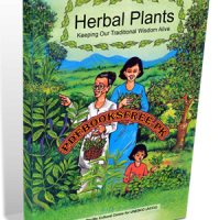 Herbal Plants Keeping Our Traditional Wisdom Alive Pdf Free Download