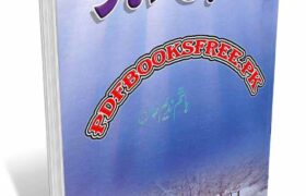 Bachpan Ka December Novel by Hashim Nadeem Pdf Free Download